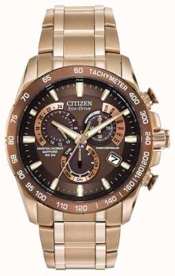 Citizen Relojes de acero inoxidable perpetua en placa de oro AT4106-52X