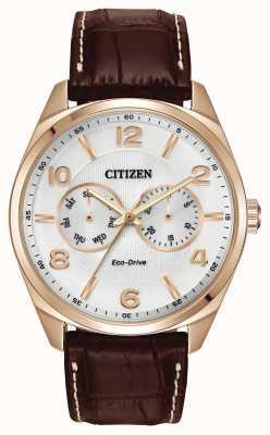 Citizen Mens aumentaron dial de Champagne de oro de cuero marrón reloj de la correa AO9023-01A