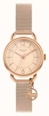 Radley El | pulsera de malla de oro rosa para mujer | esfera de oro rosa | RY4528