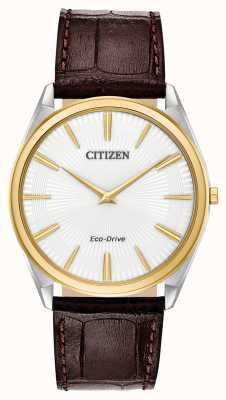 Citizen Stiletto | impulsión ecológica de los hombres | correa de cuero marrón | esfera blanca AR3074-03A